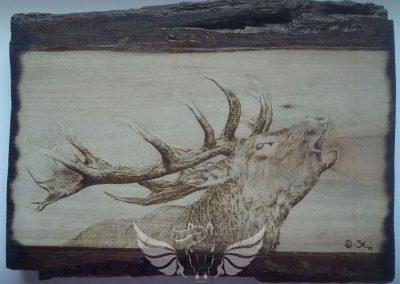 Az erdő hangja - kézzel készült pirográfia tömör amerikai dió fára, kb. A4-es méretben